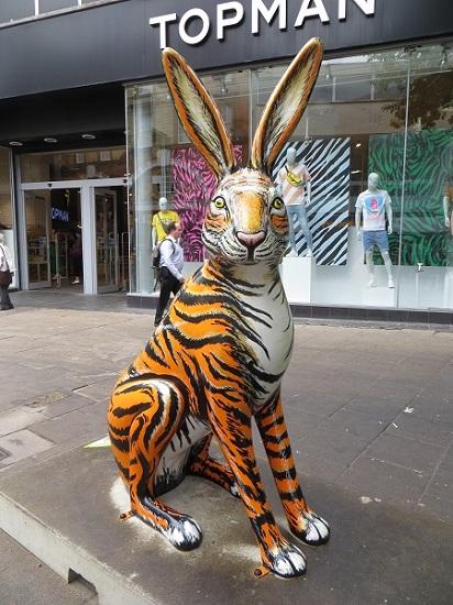 Tiger Hare