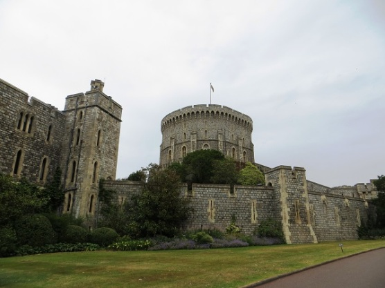 Windsor 6