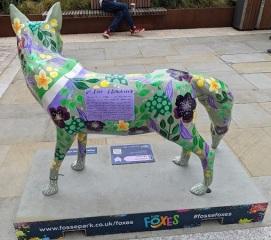 Leicester Fosse Park 10.07.21 (19)